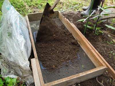 ふるいにかける 枝豆 土